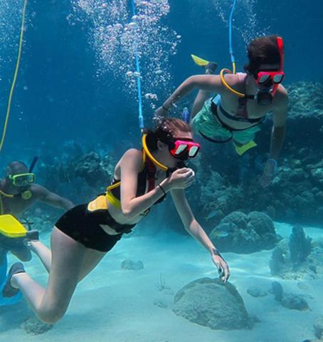 2 persons scuba diving